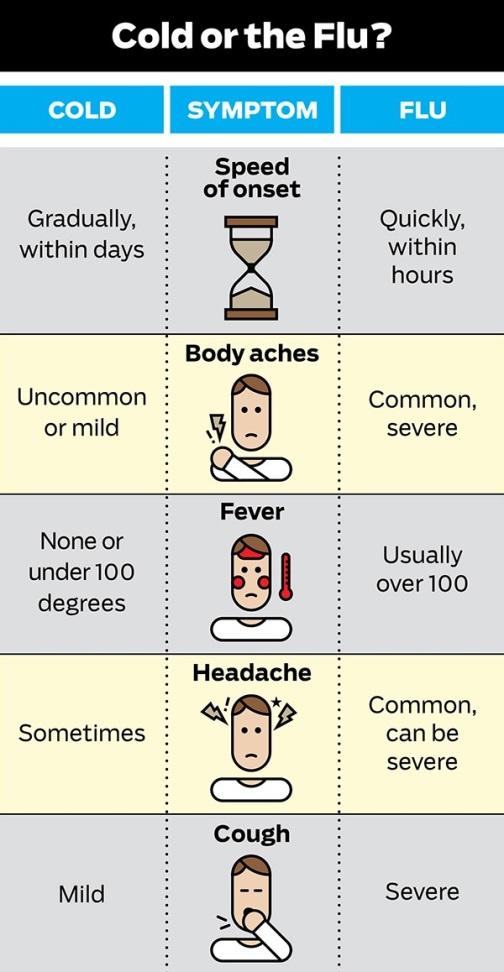 Flu vs. Common Cold